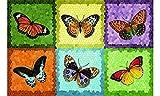 Fußmatte Fussmatte Fußabstreifer Fussabstreifer Sauberlaufmatte Schmutzfangmatte Schmutzmatte - Fussmatte - robuste Fußmatte Schmetterlinge / Butterfly / bunt ca. 44 x 67 cm