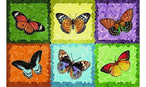 Fußmatte Fussmatte Fußabstreifer Fußabtreter Fussabstreifer Fussabtreter Schmutzmatte Sauberlaufmatte Türfussmatte Tütmatte Schmutzfangmatte Schmutzmatte robuste Fußmatte - Fussmatte - robuste Fußmatte Schmetterlinge / Butterfly / bunt ca. 44 x 67 cm