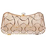 Bonjanvye Metal Clutch Evening Bags for Women Clutch With Handle Champagne