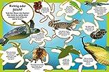 memo Kids, Band 18: Reptilien: Schlangen, Krokodile und Echsen - 4