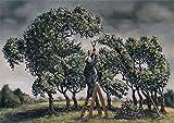 Postkarte A6 • 77803 ''Drachenbaum'' von Inkognito • Künstler: Kai Würbs • Satire