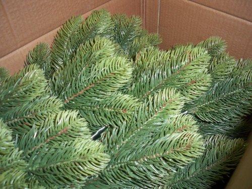 Miglior albero di natale 210 cm pino artificiale da for Albero di natale vero