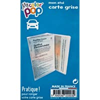 Color Pop Étui Carte Grise, Pochette de Protection Transparente