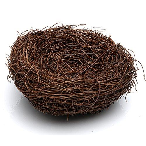 logres 12cm Bird Nest, handgefertigt Vine Braun Vogelhaus, Home nature Craft (Eichhörnchen Hund Kostüme)