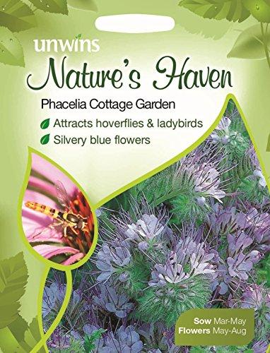 Unwins bebildertes P ckchen Natures Heaven Phacelia Cottage Garden 580 Samen