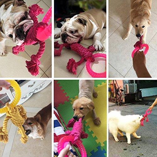 Zoom IMG-2 giocattolo cane grande interattivo spesso