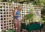 Orti urbani GREENLAND per terrazzi/giardini 90x60x75 cm. Colore: verde