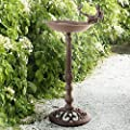 Cast Iron Bird Bath by Dio