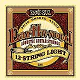 Ernie Ball EP02010 Jeu de cordes pour Guitare folk