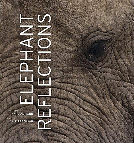 Elephant Reflections por Dale Peterson