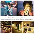 8 Stück Lichterkette Batterie Warmweiß 2M 20 led Innen Micro Draht Batterie-betriebenLichterkette Kupfer Drahtlichterkette, Weihnachtsbeleuchtung Sternen Lichterketten