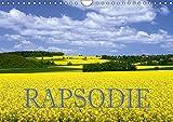 Rapsodie (Wandkalender 2019 DIN A4 quer): Rapsfelder zählen bei Naturfotografen zu den beliebtesten Fotomotive. Dieser K
