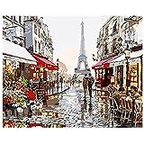 DIY Ölgemälde Newsight Bemalung Malen nach Zahl für Kinder und Erwachsene (Romantische Paris Street Eiffelturm)
