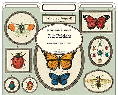 Cavallini Papers & Co Natural History Insekten Schwergewicht Datei Ordner (Set von 12)