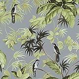 Tropical exótico pájaro gris papel pintado