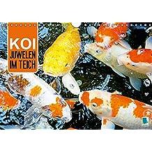 Koi: Juwelen im Teich (Wandkalender 2017 DIN A4 quer): Kois: Schöne Statussymbole (Monatskalender, 14 Seiten) (CALVENDO Tiere)