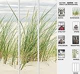Der Jalousienladen EFIXS 3er Set Flächenvorhang Duenengras, Halbtransparent, Maße: 180 x 245cm