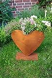 Bluemelhuber Herz zum Bepflanzen Rost Gartendeko Edelrost (Bild: Amazon.de)