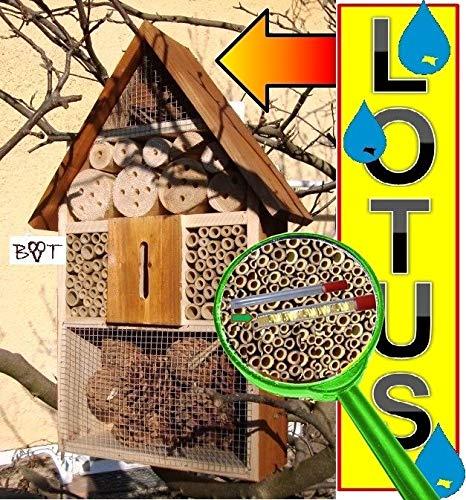 Insektenhaus dunkelbraun Teak Look mit Schmetterlingshaus braun Insektenhotel groß 50 cm mit Lotus-Effekt Oberflächen Beschichtung und 2 Sichtgläsern 8 und 11 mm Beobachtungsröhrchen komplett mit Zellstoff und Füllmaterial für Nistkasten Schmetterling Haus Bienen Wildbienen Unterschlupf