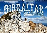 Gibraltar - der Affenfelsen (Wandkalender 2019 DIN A3 quer): Europas einzige wildlebende Affen in einer atemberaubenden Landschaft (Monatskalender, 14 Seiten ) (CALVENDO Orte) -