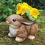 Häschen als Gartendeko Gartenfigur Pflanztopf Schuh Blumentopf Übertopf Hase Tiere Wildlife Deko Figur Frog