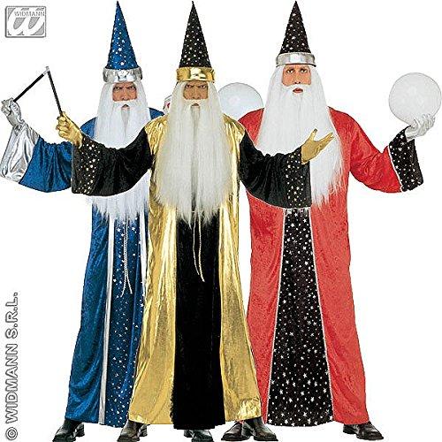 Kostüm Zauberer, Verkleidung für Herren zu Halloween, Fasching, Karneval, mit Zaubererhut (Alle Halloween Kostüme)