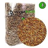 Samore 3 kg Mehlwürmer getrocknet - Vogelfutter Fisch-Futter Nager Vögel Reptilien Igel - Versand mit DHL