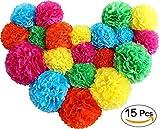 Cookey 15 Stücke Seidenpapier PomPoms Blumenbälle, Verschiedene Regenbogen Farben Blumen für Hochzeit, Geburtstag, Party, Baby Dusche Dekorationen - 35CM 30CM 25CM
