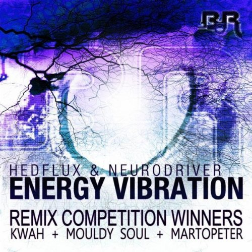 Energy Vibration (Mouldy Soul Remix)