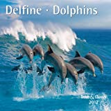 Delfine - T & C-Kalender 2012