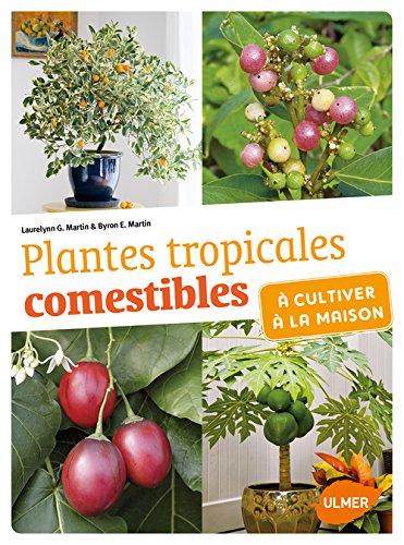 plantes-tropicales-comestibles-a-cultiver-a-la-maison