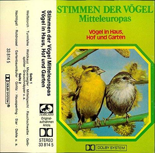 Stimmen der Vögel...
