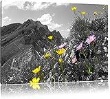 Traumhafte Blumenwiese im Frühling schwarz/weiß Format: 100x70 auf Leinwand, XXL riesige Bilder fertig gerahmt mit Keilrahmen, Kunstdruck auf Wandbild mit Rahmen, günstiger als Gemälde oder Ölbild, kein Poster oder Plakat
