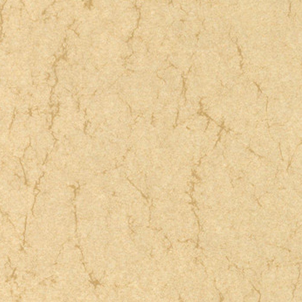 Elefantenhaut Farbe elefantenhaut urkundenpapier speisekarten a4 90g beidseitig 50