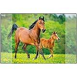 Idena 10454 – skrivbordsunderlägg med två fickor, häst, ca 58,5 x 38,5 cm stor, praktiska tillbehör för barn, ungdomar och ar
