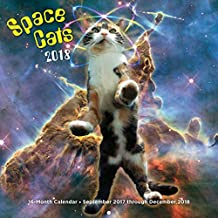 Space Cats 2018: 16 Month Calendar Includes September 2017 Through December 2018 (Calendars 2018)