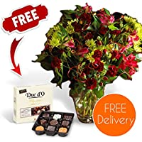 Fresh Christmas Flowers Delivered - Christmas Cheer Bouquet including Chrysanthemums, Carnations & Alstroemeria with Chocolates, Flower Food and Bonus Ebook Guide - Perfect For Xmas Gifts