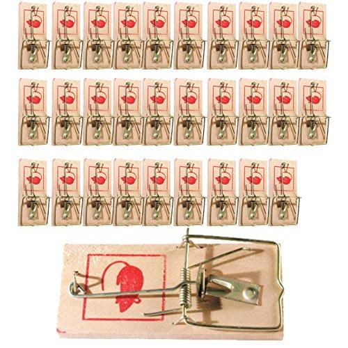 30 Stück Mäusefalle Mäuse Falle Holz Holzfalle Maus Mäuse Mausefalle Holz