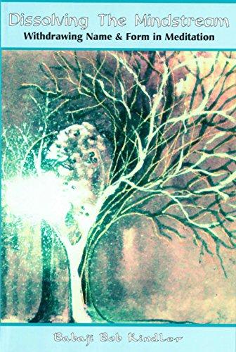 Dissolving the Mindstream (English Edition) eBook: Babaji Bob ...