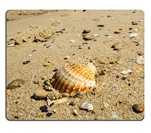 liili-mouse-pad-natural-rubber-mousepads-a-shell-on-the-beach-of-san-benedetto-del-tronto-italy-2965
