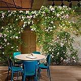Kuamai Benutzerdefinierte 3D Wallpaper Murals Rose Blume Reben Holztür Zement Wand Retro Nostalgie Wohnzimmer Restaurant Hintergrund Dekor Wandbild-208X146Cm