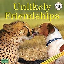 Unlikely Friendships 2018 Calendar