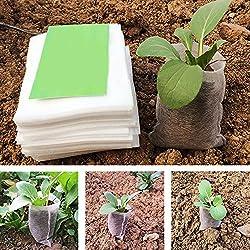 Bolsitas eco para plantar