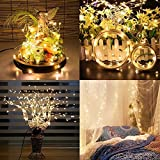 Ascension ® 5.5 M 60 LED Waterproof Silver Copper String Lights Starry Decoration Lights With Adapter For Diwali,Navratre, Christmas, New Year Party, Holiday,valentine Lights Indoor & Outdoor (Warm White) (Pack Of 1)