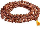 #5: ZURU Bunch Original Nepal 5 mukhi Rudraksha Mala for All Rashis in 7 MM Rudraksh Mala (108+1 Beads)