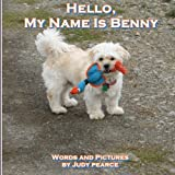 Hello, My Name Is Benny