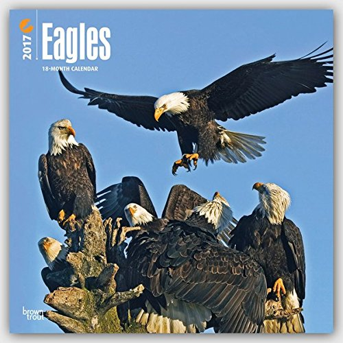 Eagles 2017 Wall