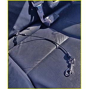 Hunde-Anschnallgurt Fürs Auto – Bissfester Strapazierfähiger Anschnallgurt – 4 Größen – Extra Resistent Gegen Kauen – Für Kleine, Mittelgroße, Große, und Sehr Große Brustgeschirre (79 cm (Sehr Große))