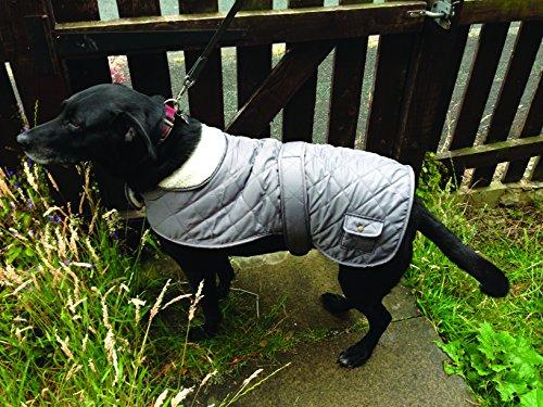 Banbury & Co All Weather Comfort Dog Coat, Large 4