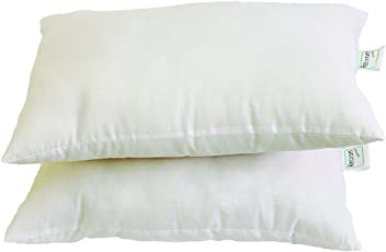 Recron 16x24 Pillow